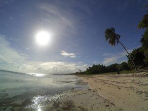 Dzika plaża.